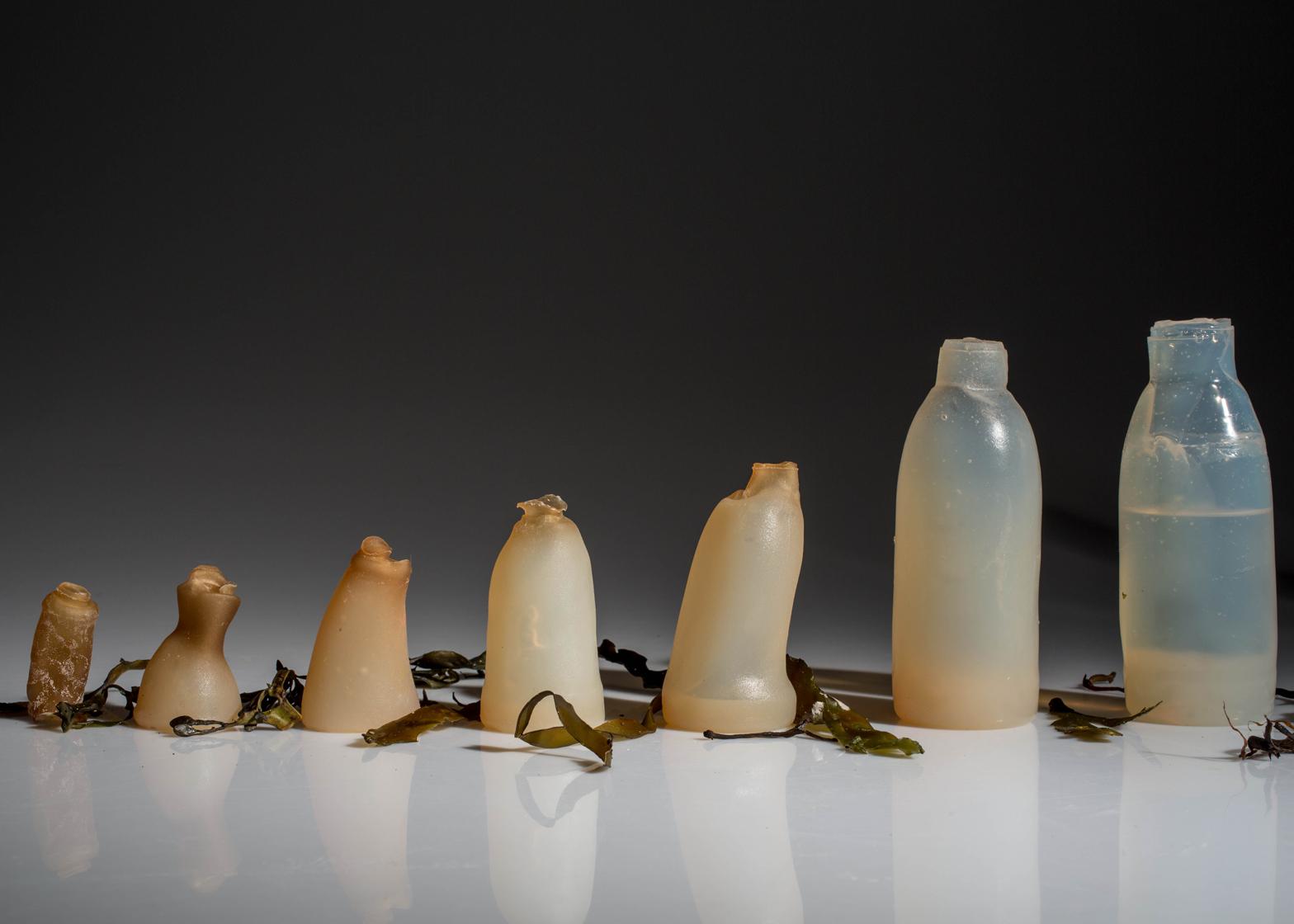 Dall'Islanda la bottiglia fatta di alghe che si auto-elimina